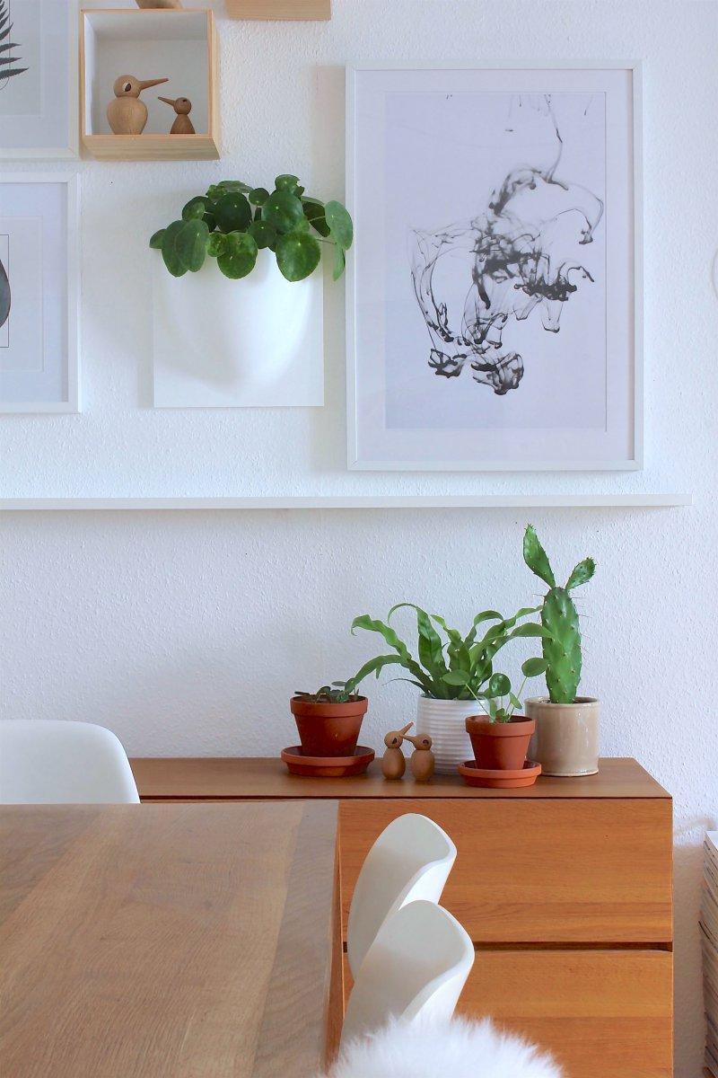 pilea s an die wand plus gewinnspiel labelfrei me. Black Bedroom Furniture Sets. Home Design Ideas